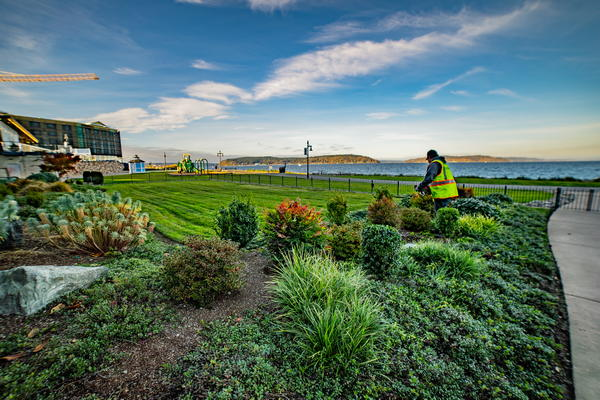 Commercial-Landscape-Installation-Dupont-WA