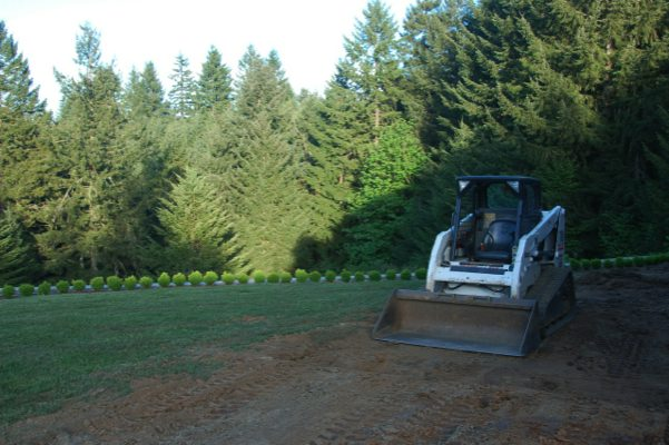 Commercial-Landscaping-Fircrest-WA
