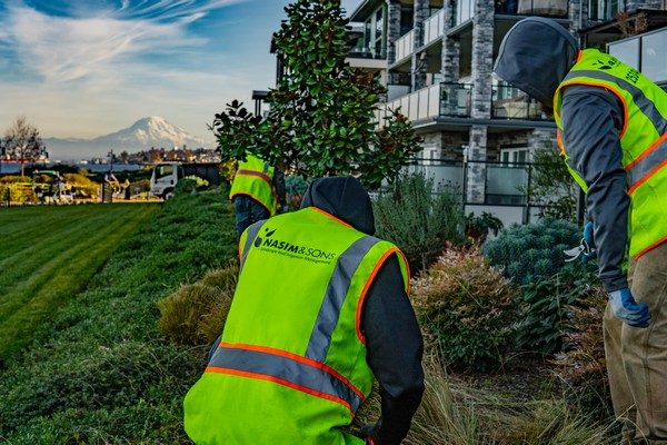 Commercial-Landscaping-Lacey-WA