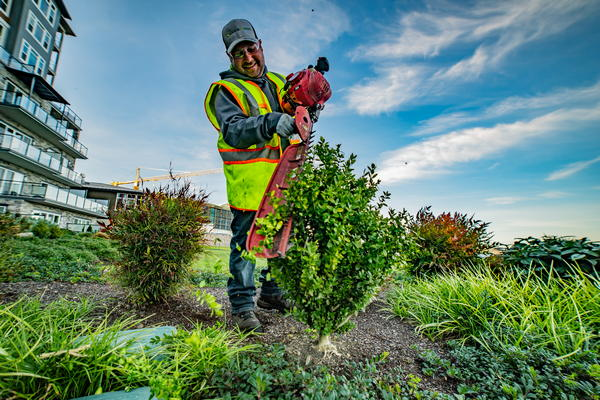 Commercial-Landscaping-Lakewood-WA
