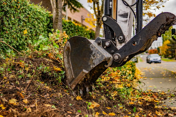 Landscaping-Services-Federal-Way-WA