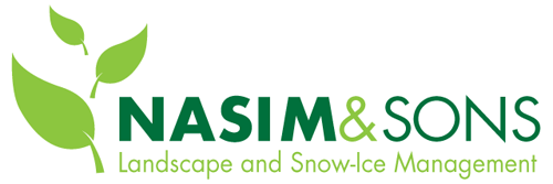 Nasim and Sons