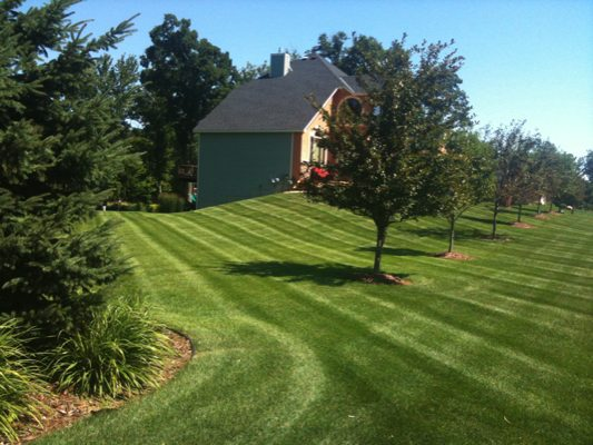 Commercial-Landscaping-Puyallup-wa